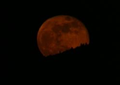 Full Wolf Moon 01-11-2009 6crop