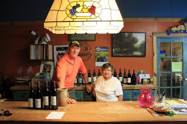 Today we toured 4 wineries along the Applegate Trail of wineries. The most interesting one was a downtrodden place that looked as if we should bypass it. An old man came out and greeted us and said come on in. So did we and had a great time. The wine was good and so were the stories. It seems his daughter lives in Vermont, somewhere. Anyway, we came back with 16 bottles and two more rolls of duct tape, so I could individually wrap the bottles. These must all fit under the bed. While in California we'll be visiting Anderson Valley, Russian Valley and Mendocino area vineyards. Oh, my God! Where am I going to put all those bottles? After these excursions, we off to Modesto to visit a friend. She called today and asked what are we going to do while we're there? My answer: of course visit vineyards! - IMG 3828