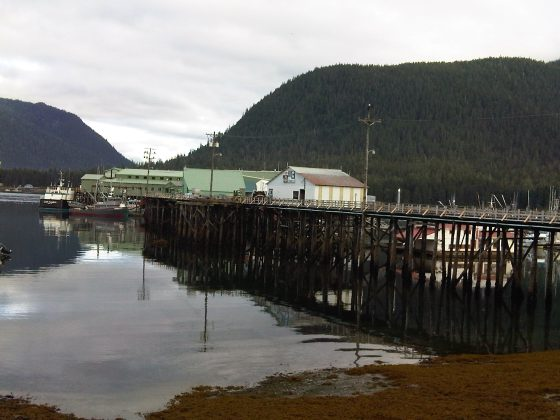 Petersberg Harbor and Cannery