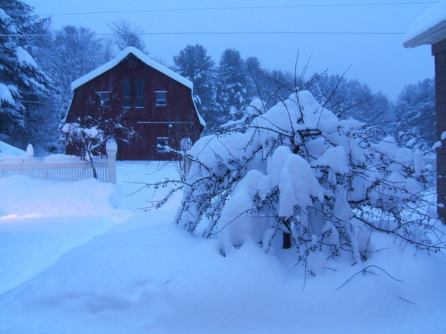 Winter2010001