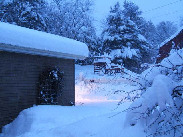 Winter2010004